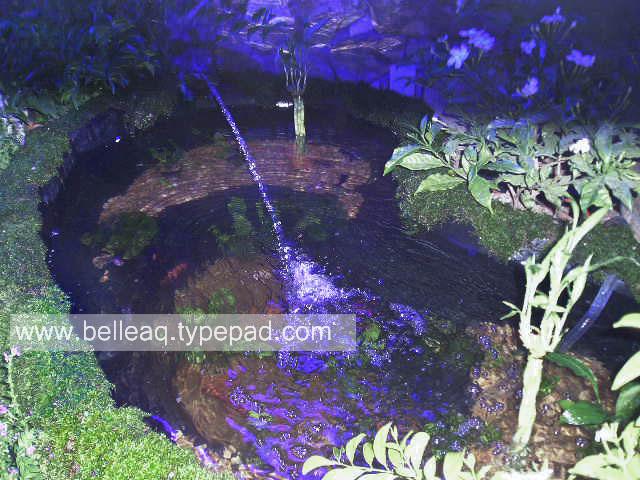 Blue Miami Pond