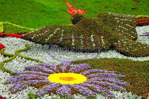 Gardenart6