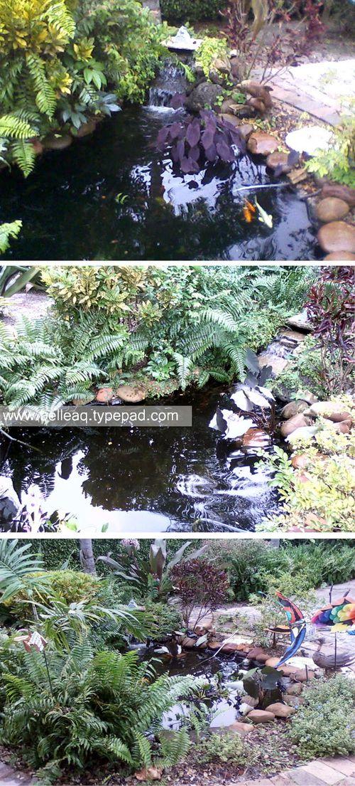 Belle_pond