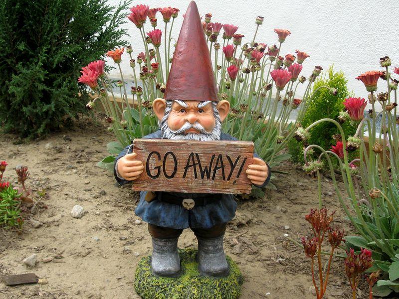 Go_Away_Gnome.9094124