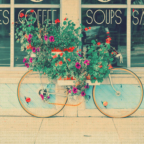 Flowerbike2
