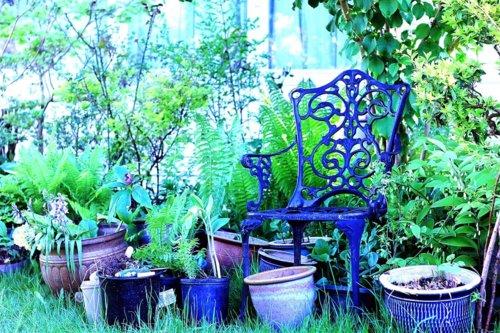 Purple chiar garden